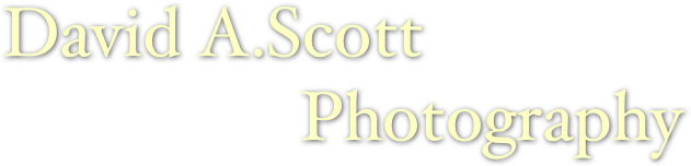 David A.Scott